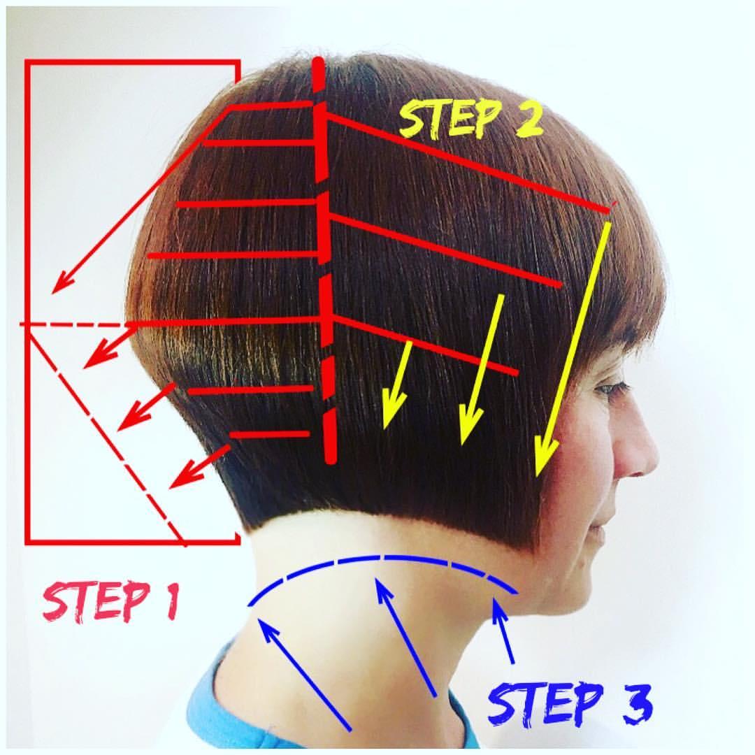 想剪好发型,你要先看懂发型结构图