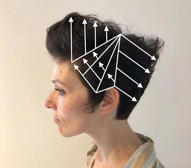 看懂这些发型结构图,你也是大师