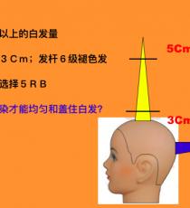 明度色彩染发技术