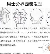 男士发型修剪理论图解