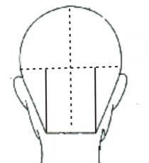 剪发常用六条分区划分线