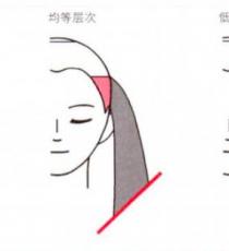 剪发的各种切口层次的说明
