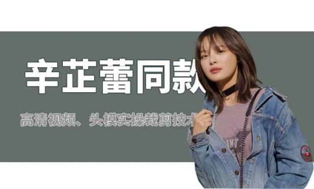 2018辛芷蕾同款发型裁剪课程(共10集)
